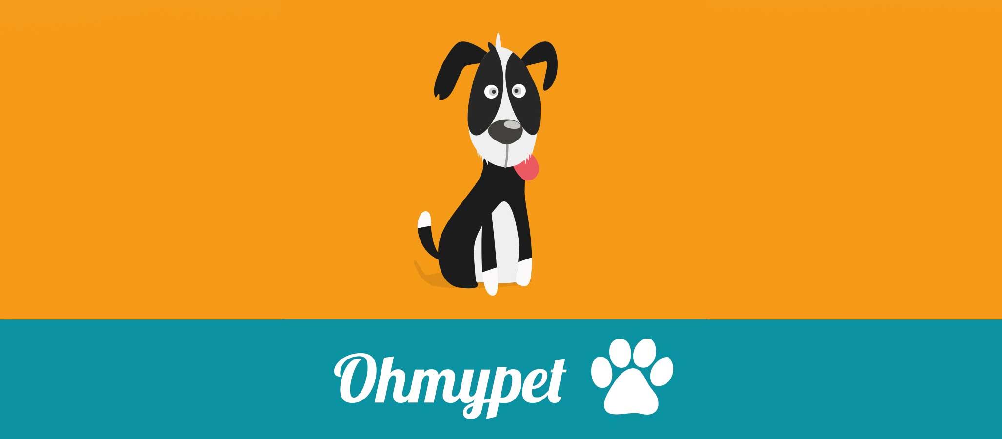 Bienvenidos al blog de ohmypet!